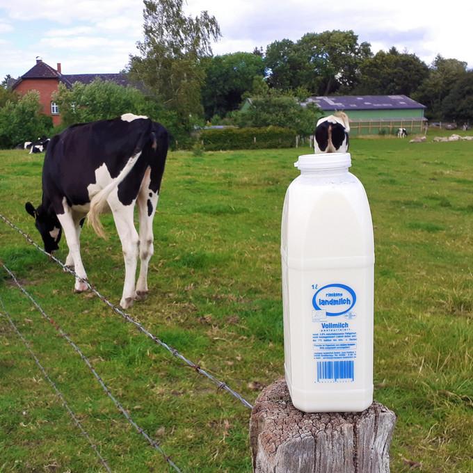 Bio-Vollmilch aus Großbarkau-> 1 Liter - 1,69 €